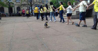 Praça da Liberdade amarelando o Brasil